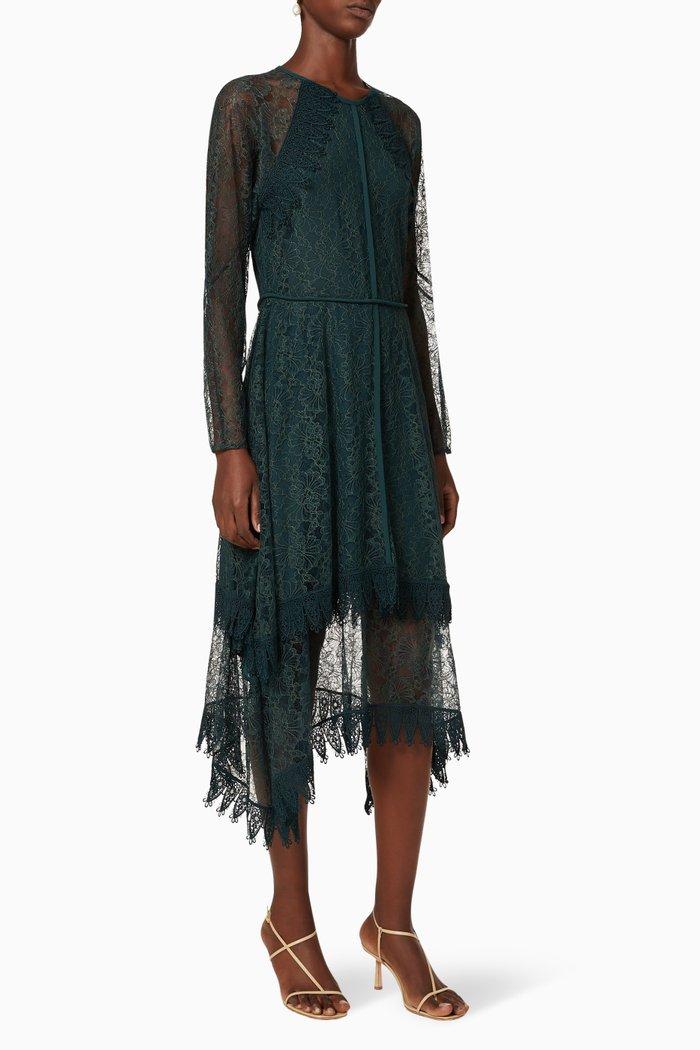 Lace Georgette Dress